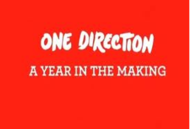A year in the making documentary