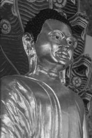 4 noble truths and the 8 fold path