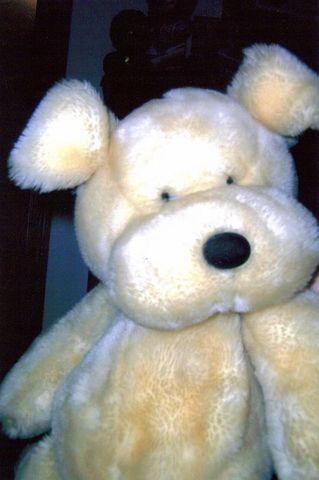 Got my favorite stuffed dog