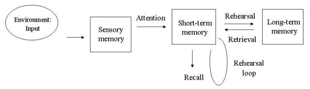 Atkinson and Shiffrin Create the Multi Store Model of Memory