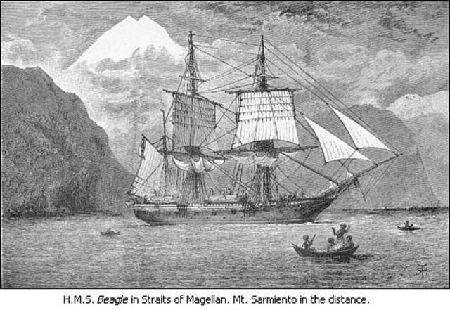 El Beagle termina su viaje en Falmouth.