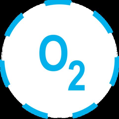 (2 BYA) Oxygen Levels