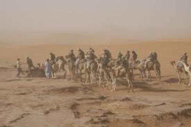 OPERACIÓN: Escudo del Desierto