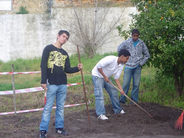 CEF Jardinagem - horta pedagógica