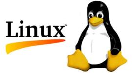 linea de tiempo codigo linux timeline