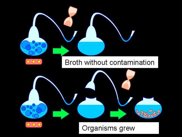 (1800-1900) Pasteur's Experiment