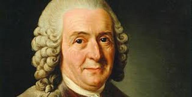 Carolus Linnaeus's Theory