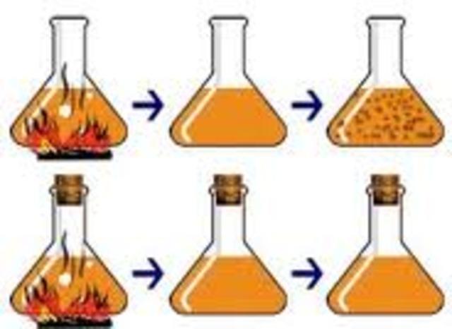 Spallanzi's Experiment