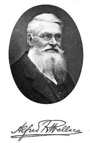 Alfred Russel Wallace; Born