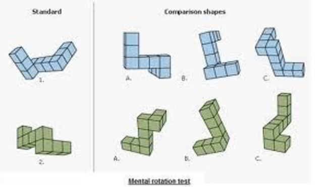 """""""Mental Tests and Measurements"""""""