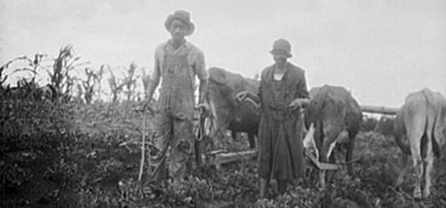 Colored Farmers' National Alliance