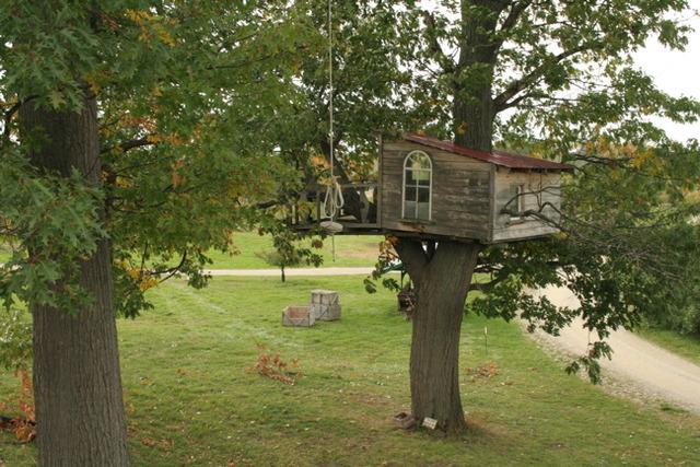 Yo planeaba construir la casa de árbol.