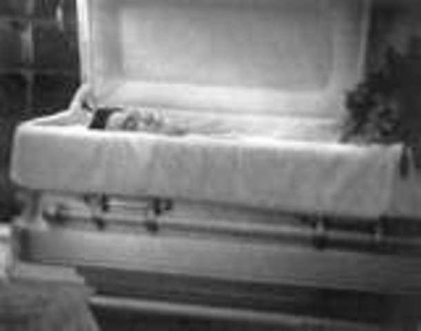 Elvis's Death