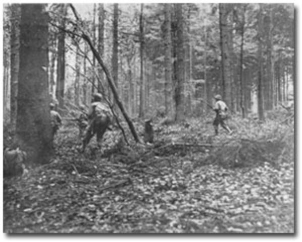 End of battle of Hürtgen Forest