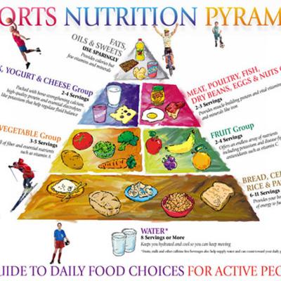 Sport Nutrition  timeline