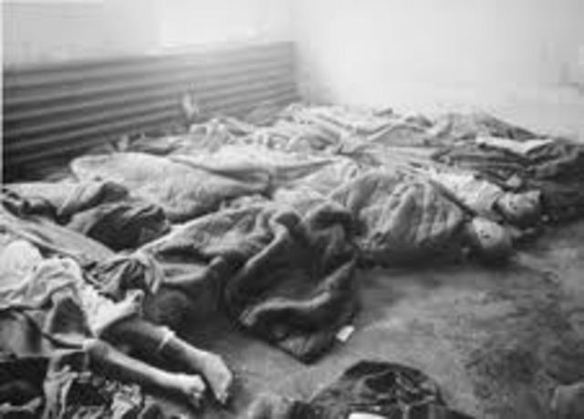 Beginning of evacuation to Auschwitz