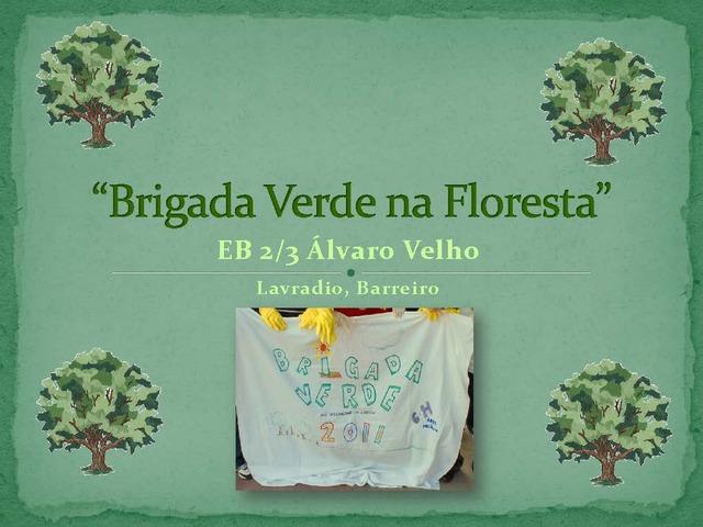 Projeto Brigada Verde na Floresta