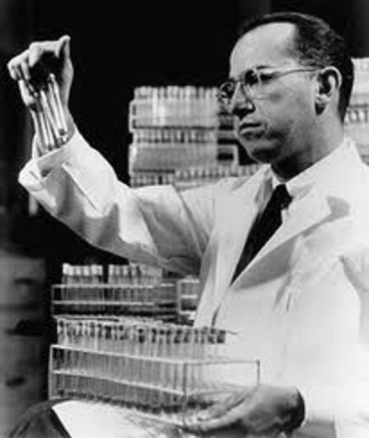 Polio vaccin created