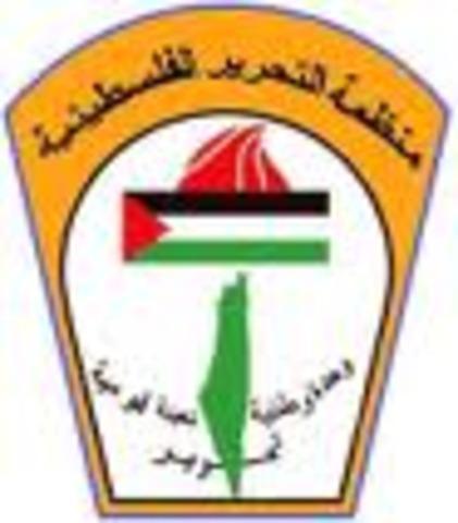 Creation of PLO