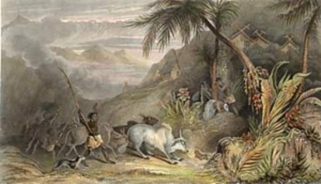 los regímenes de representación colonial y desarrollista