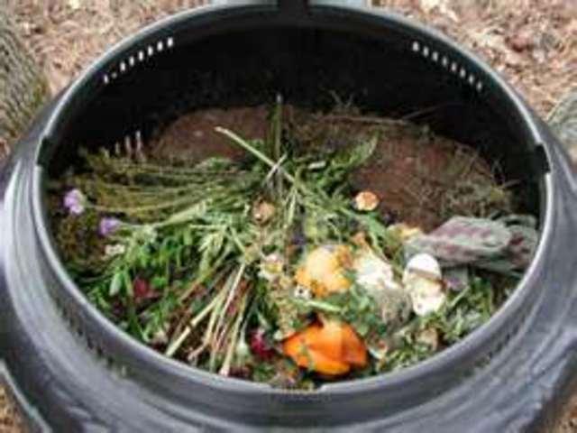 Compost dead plants