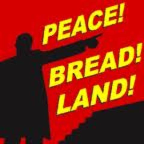 Bolshevik Revolution of 1917