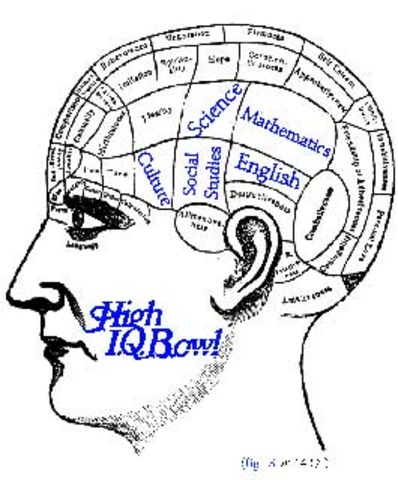 The Concept of IQ