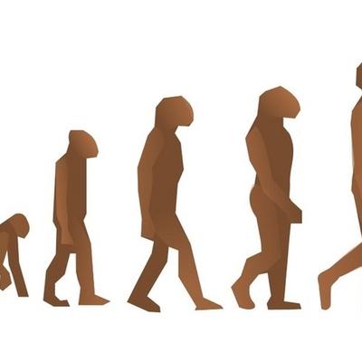 EVOLUCION Y ORIGEN DEL HOMBRE timeline
