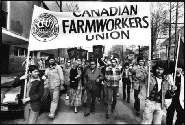 United Farmers of Canada