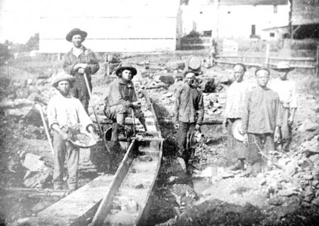 First true Chinese immigrants arrived in the United States