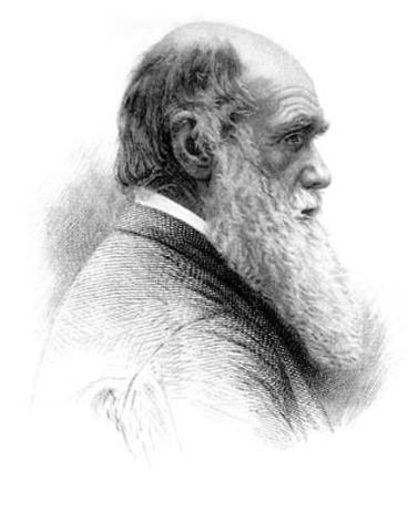 Social Darwinism: Misunderstood from Its Inception