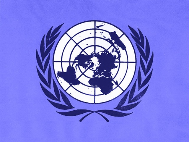 ORGANIZACION DE NACIONES UNIDAS ONU