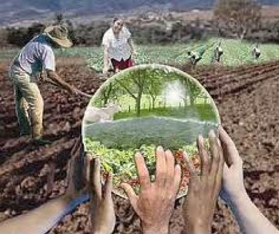 Acta para el desarrollo internacional