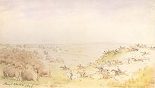 Collapse of the Bison Herds