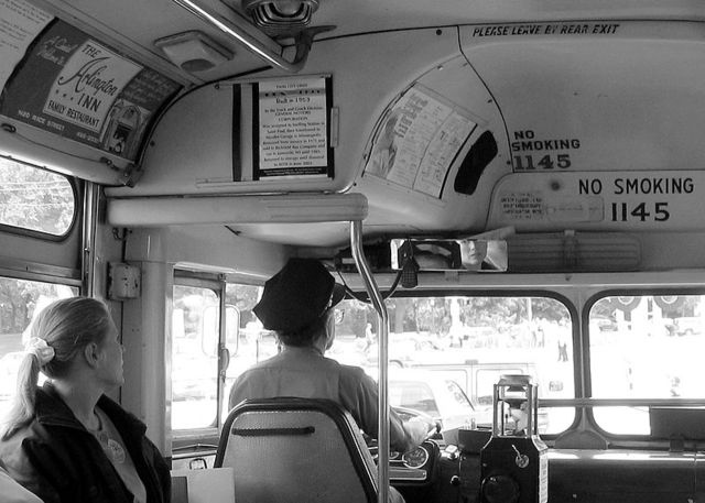 Introduction of  Public Buses