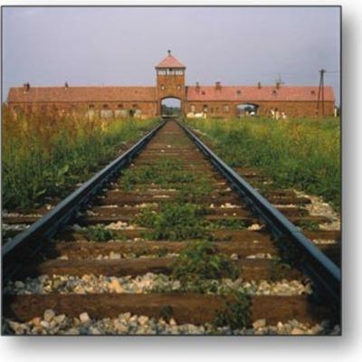 Auschwitz:Concentration Camp,,,Karina and Sam  timeline