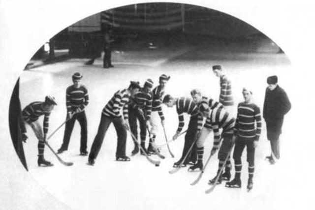 1st Organixed Hockey Game