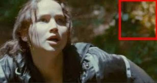 Katniss hides from the careers.
