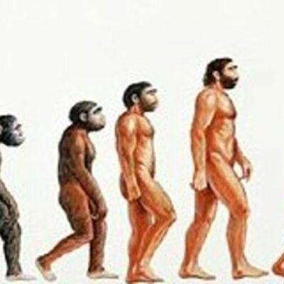 Origen y evolcuion del hombre timeline
