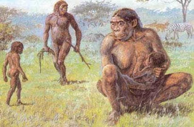 Los homínidos o primeros humanos (15Millones de años antes)