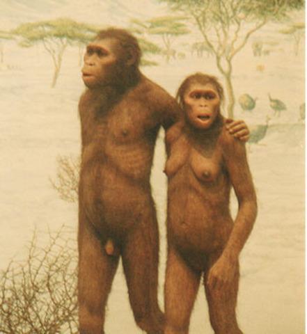 Australopithecus (4millones de años antes)