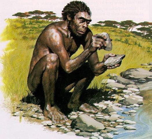 Homo habilis  (2millones de años antes)