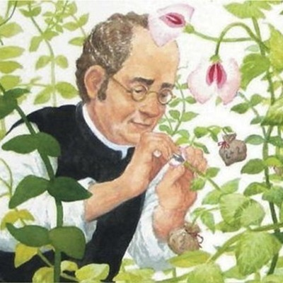 """Genetic Disaster: """"Life without the discoveries of Mendel"""" timeline"""