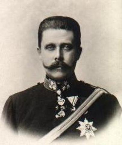 Archduke Franz Ferdinand and his wife got assassinated.