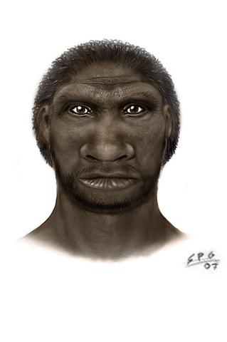 Homo cepranensis (800000 años a.C)