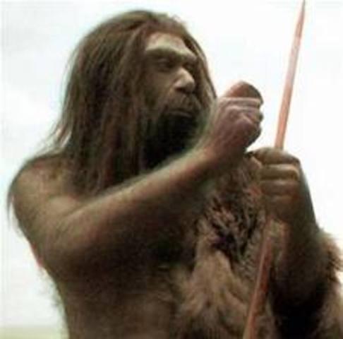 Descubrimiento del hombre de Neandertal