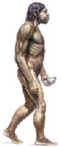 Hace 250 mil o 50 mil años aparecio el Homo sapiens neanderthalis