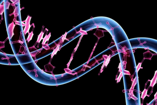DNA Structure Discovered