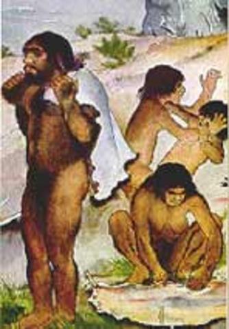 Homo sapiens neanderthalis 250 mil y 50 mil años