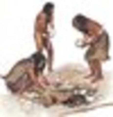 El Homo sapiens neanderthalis